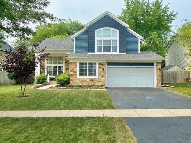 1485 Mayfair Lane, Grayslake, IL 60030 (MLS #11163705) :: Suburban Life Realty