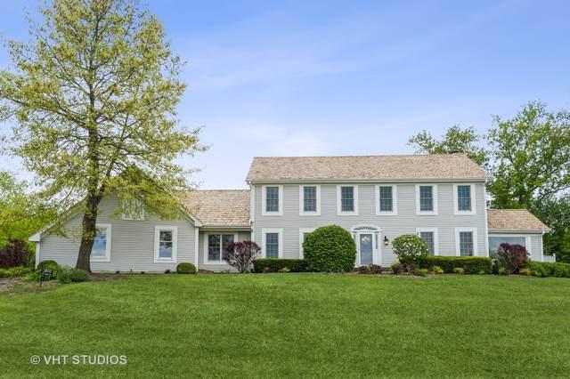20515 N Meadow Lane, Deer Park, IL 60010 (MLS #11164404) :: O'Neil Property Group