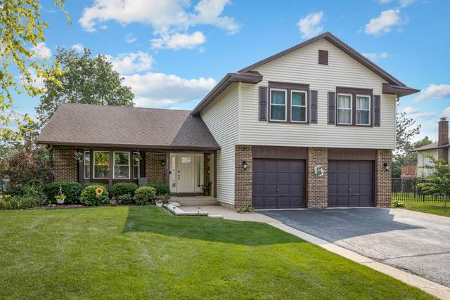 1024 Georgia Drive, Elk Grove Village, IL 60007 (MLS #11164431) :: O'Neil Property Group