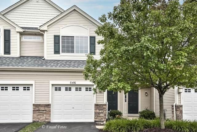546 Telluride Drive, Gilberts, IL 60136 (MLS #11164506) :: Suburban Life Realty