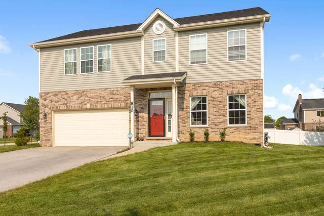 810 S Anderson Road, New Lenox, IL 60451 (MLS #11164577) :: Schoon Family Group