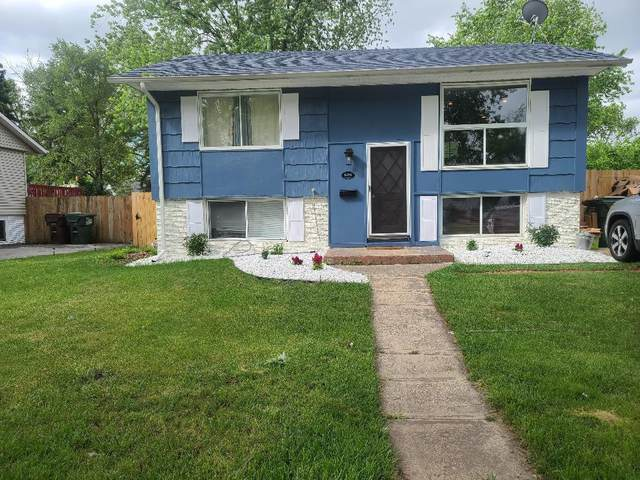 4201 Clark Drive, Richton Park, IL 60471 (MLS #11164637) :: O'Neil Property Group