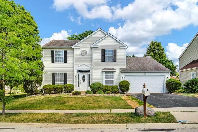 43 Buchanan Lane, Streamwood, IL 60107 (MLS #11164808) :: John Lyons Real Estate
