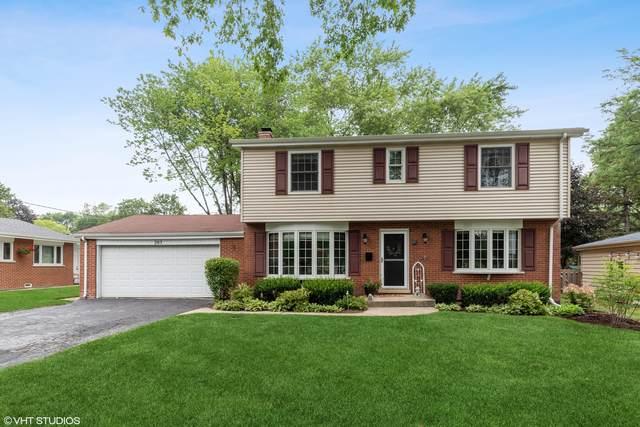 203 S Princeton Avenue, Arlington Heights, IL 60005 (MLS #11164858) :: O'Neil Property Group