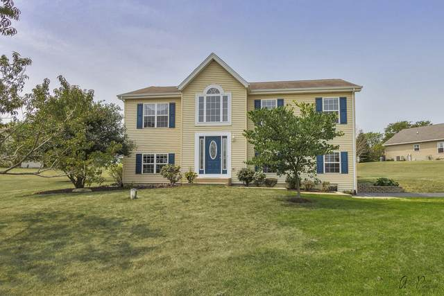 4012 Crabapple Lane, Wonder Lake, IL 60097 (MLS #11165169) :: O'Neil Property Group