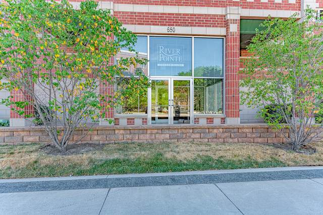 650 S River Road #807, Des Plaines, IL 60016 (MLS #11165232) :: The Wexler Group at Keller Williams Preferred Realty