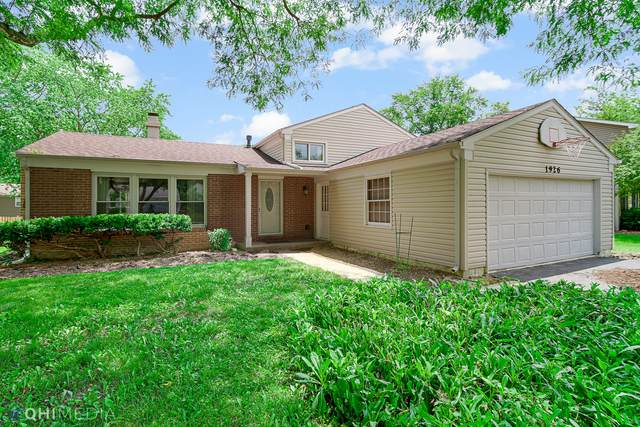 1926 Springside Drive, Naperville, IL 60565 (MLS #11165551) :: O'Neil Property Group