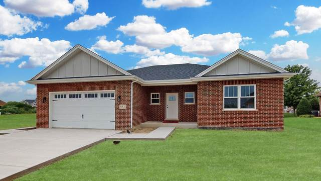 551 Blackberry Lane, New Lenox, IL 60451 (MLS #11165606) :: O'Neil Property Group