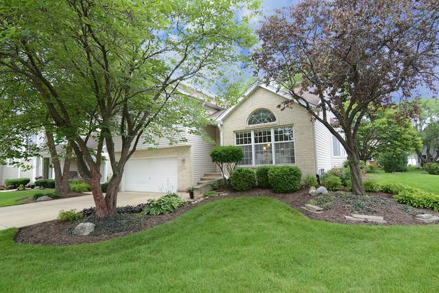 558 Abbey Road, Bartlett, IL 60103 (MLS #11165814) :: Suburban Life Realty