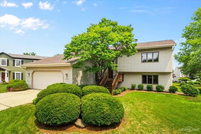 6455 Cape Cod Court, Lisle, IL 60532 (MLS #11165907) :: O'Neil Property Group