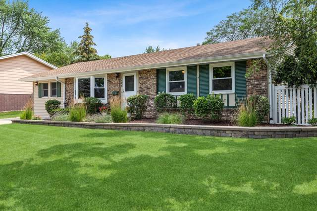 1305 Hartmann Drive, Schaumburg, IL 60193 (MLS #11165923) :: Jacqui Miller Homes