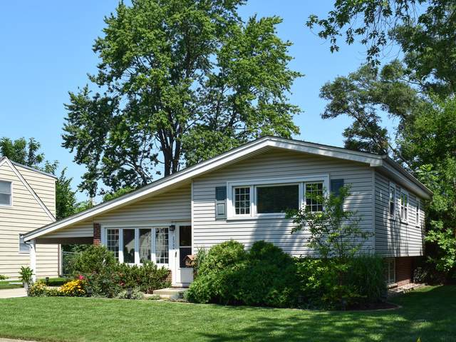 2064 Pratt Avenue, Des Plaines, IL 60018 (MLS #11166046) :: Helen Oliveri Real Estate