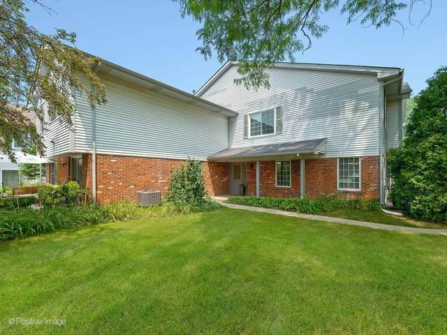 6S032 Steeple Run Drive, Naperville, IL 60540 (MLS #11166193) :: Suburban Life Realty