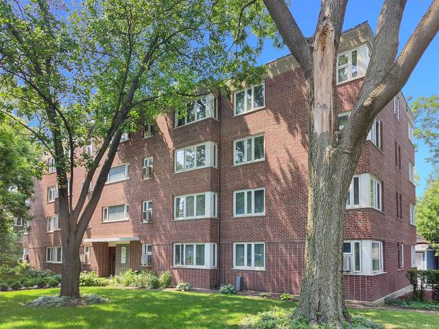 7210 Oak Avenue 2SW, River Forest, IL 60305 (MLS #11166410) :: O'Neil Property Group