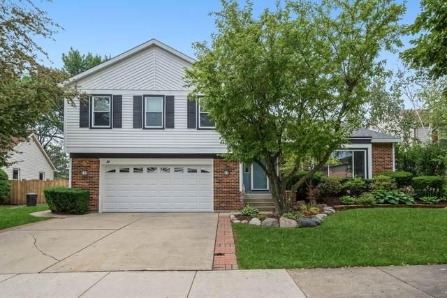 31 W Fabish Drive, Buffalo Grove, IL 60089 (MLS #11166554) :: O'Neil Property Group
