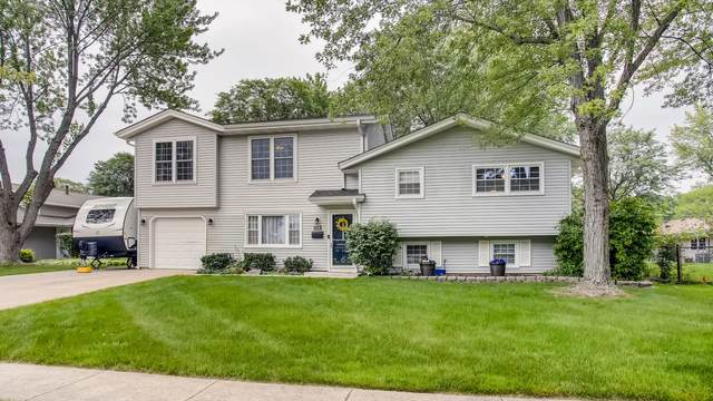 118 Grand Central Lane, Schaumburg, IL 60193 (MLS #11166760) :: Jacqui Miller Homes