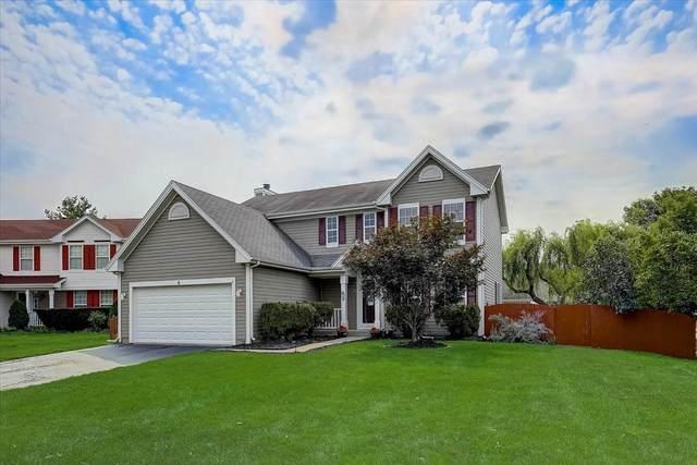 6 Buckboard Court, Bolingbrook, IL 60490 (MLS #11166921) :: Angela Walker Homes Real Estate Group