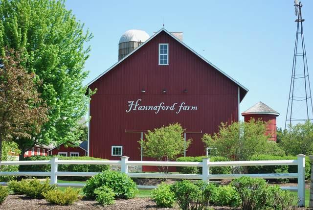 844 Wheatfield Avenue, Sugar Grove, IL 60554 (MLS #11167205) :: Jacqui Miller Homes