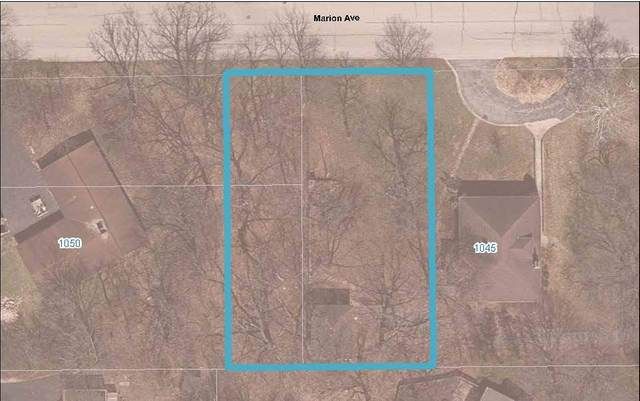 Lot B Marion Avenue, St. Charles, IL 60174 (MLS #11167375) :: The Wexler Group at Keller Williams Preferred Realty