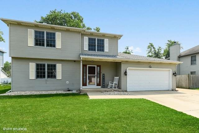 230 Laurie Circle, Bolingbrook, IL 60440 (MLS #11167429) :: O'Neil Property Group