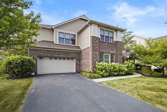 3633 Fewflower Court, Elgin, IL 60124 (MLS #11167546) :: Suburban Life Realty