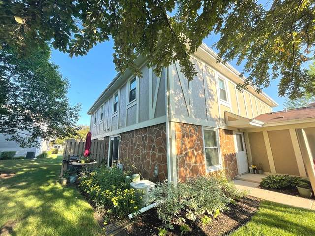 1063 Brunswick Harbor #0, Schaumburg, IL 60193 (MLS #11167718) :: O'Neil Property Group