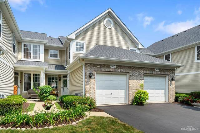 910 Sheridan Circle, Naperville, IL 60563 (MLS #11167740) :: Janet Jurich