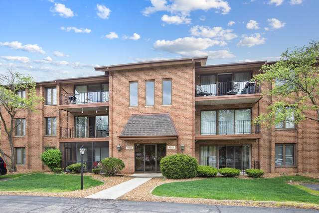 9917 Shady Lane 2NE, Orland Park, IL 60462 (MLS #11167840) :: The Wexler Group at Keller Williams Preferred Realty