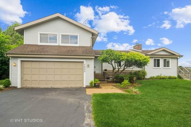 1203 W Hintz Road, Arlington Heights, IL 60004 (MLS #11167859) :: O'Neil Property Group