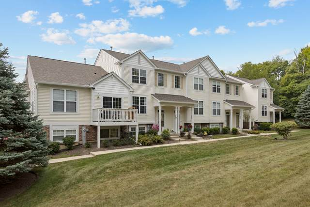 303 Terra Springs Circle, Volo, IL 60020 (MLS #11167927) :: O'Neil Property Group