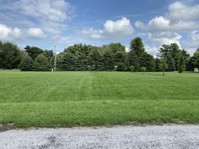 116 Chippewa Drive, Loda, IL 60948 (MLS #11168660) :: The Dena Furlow Team - Keller Williams Realty