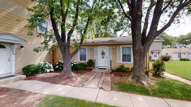 258 Sunset Court #258, Vernon Hills, IL 60061 (MLS #11168716) :: The Wexler Group at Keller Williams Preferred Realty