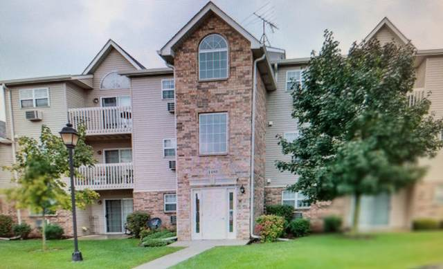 1480 Spring Brook Court 2C, Round Lake Beach, IL 60073 (MLS #11168817) :: Jacqui Miller Homes
