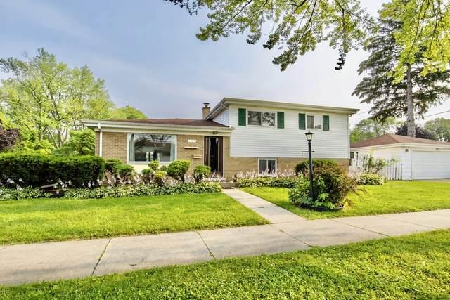 1704 Maple Street, Des Plaines, IL 60018 (MLS #11168935) :: Helen Oliveri Real Estate