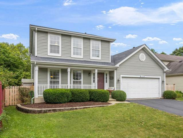 912 Lowell Lane, Naperville, IL 60540 (MLS #11168938) :: O'Neil Property Group