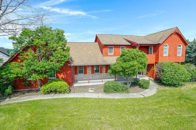 17455 S Mccarron Road, Homer Glen, IL 60491 (MLS #11168990) :: O'Neil Property Group