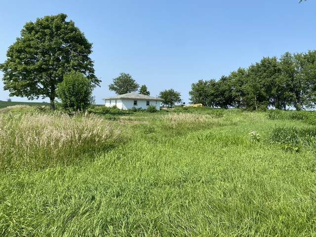 11592 N 700th Avenue, Granville, IL 61326 (MLS #11169084) :: O'Neil Property Group