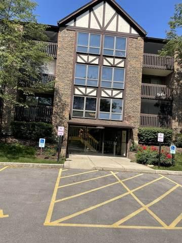 10351 Menard Avenue 3-313, Oak Lawn, IL 60453 (MLS #11169199) :: The Wexler Group at Keller Williams Preferred Realty