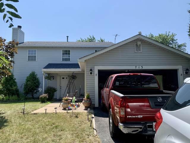 713 Melissa Drive, Bolingbrook, IL 60440 (MLS #11169239) :: O'Neil Property Group
