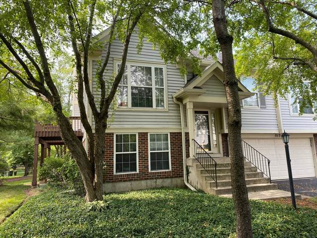 1117 Stillwater Road, Elgin, IL 60120 (MLS #11169362) :: Jacqui Miller Homes