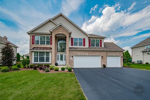 26422 Silverleaf Drive, Plainfield, IL 60585 (MLS #11169447) :: O'Neil Property Group