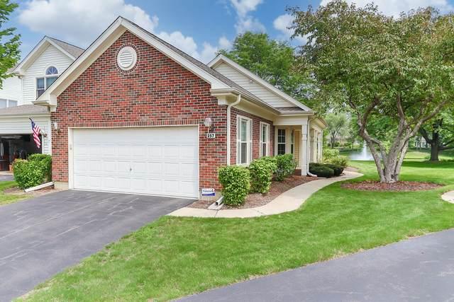 257 Bridlewood Court, Schaumburg, IL 60173 (MLS #11169550) :: O'Neil Property Group