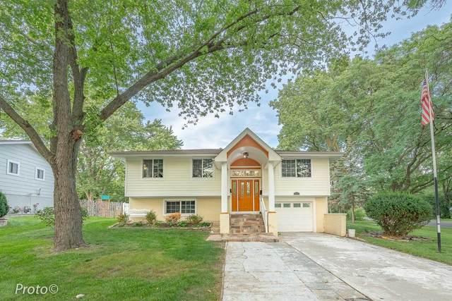 1335 Fairlane Drive, Schaumburg, IL 60193 (MLS #11169861) :: Jacqui Miller Homes
