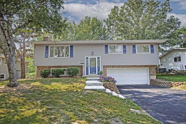 553 Maywood Lane, Lisle, IL 60532 (MLS #11169991) :: The Dena Furlow Team - Keller Williams Realty