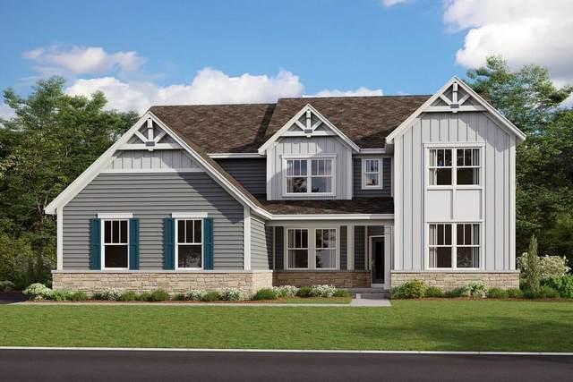 24254 N Blue Aster Lot #48 Lane, Lake Barrington, IL 60010 (MLS #11170029) :: The Spaniak Team