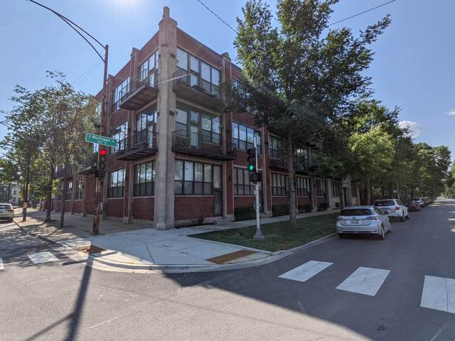 4101 S Michigan Avenue T2, Chicago, IL 60653 (MLS #11170107) :: O'Neil Property Group