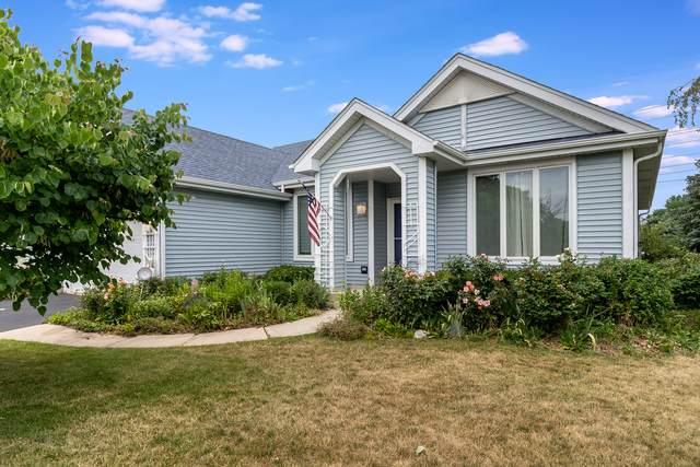 417 Matena Drive, Oswego, IL 60543 (MLS #11170140) :: Ani Real Estate