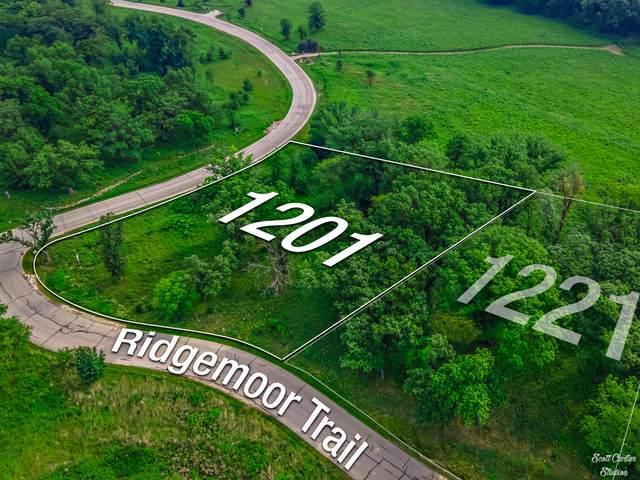 1201 Ridgemoor Trail, Bull Valley, IL 60098 (MLS #11170164) :: O'Neil Property Group