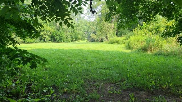 33W336 Army Trail Road, Wayne, IL 60184 (MLS #11170404) :: Littlefield Group