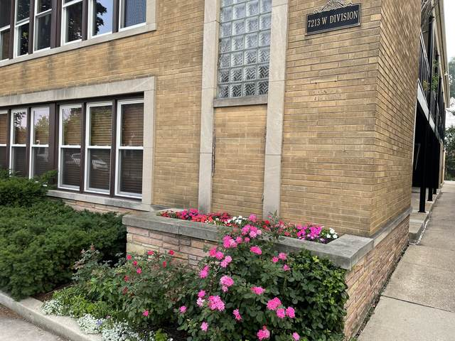 7213 Division Street #3, River Forest, IL 60305 (MLS #11170583) :: Ani Real Estate